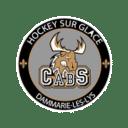 Logo Les Caribous de Dammarie-Les-Lys